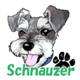 Miniature Schnauzer English ver.