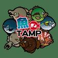 魚(ぎょ)TAMP