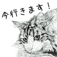 vol.02 Cats & Dogs 2 with Words
