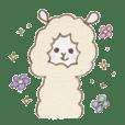 Soft alpaca