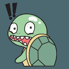 Santi turtle