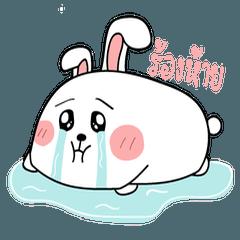Chubby Rabbit 1