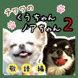 チワワのくうちゃんノアちゃん2【敬語編】