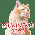 TSUKINEKO2020!