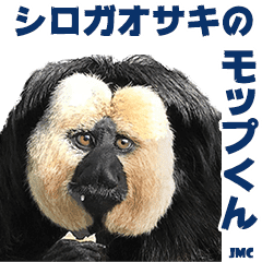 Mop-kun, White-faced Saki, JMC 3