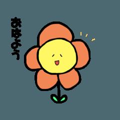 flowers conversation
