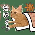 My cat's coro sticker