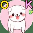 Dog waiting for spring (Shiba Inu)
