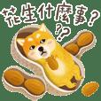 Shiba Inu Bui Sticker (VOL.11)
