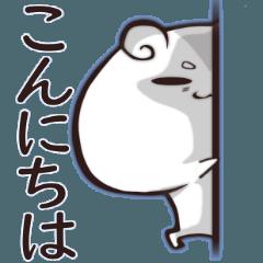 Hamster Koyukichi2