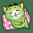 fat pretty cat