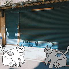 貓貓歷險記