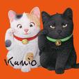 佐藤邦雄の招き猫