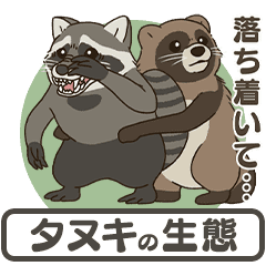Raccoon dog ecology