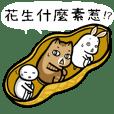 糖貓波吉6-哈囉毫小喔