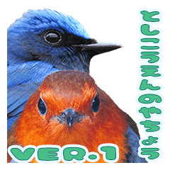 Wild birds in city park (Ver.1)