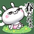 ひとえうさぎ41(春編)