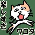 net cat