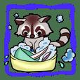 Cheerful raccoon