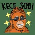Si Orangutan (Bahasa Indonesia)