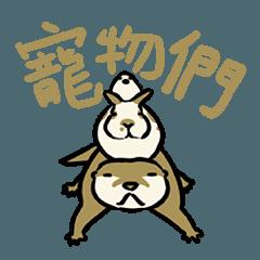 PETS! Otter Rabbit & Bird