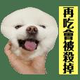 SmileQBear_20200302235905