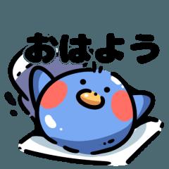 Mediocre blue bird
