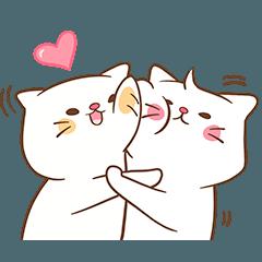 Cute Couple Cat
