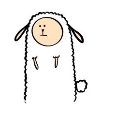 alpacas pululu