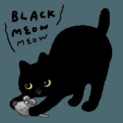 Black Cat number one