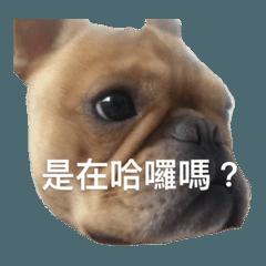 Yong_20200305175112