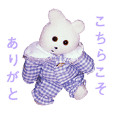 Kumakichi life3