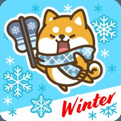 Petit Shiba in Winter