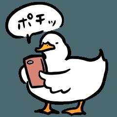 Mochi Mochi ducks