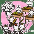 Full rabbit 2nd