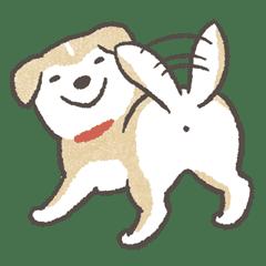 Shiba-Puppy!