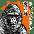 Gorilla gorilla gorilla 1