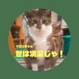 katsuhiro_20200308215513