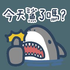 Mr. Shark 2.0