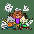 ネコ・猫・ねこ 待機中・入室・退室 日本語