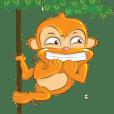ลิงน้อยน่ารัก
