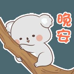Daily life of cute koala