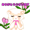 Everyday cute cats words