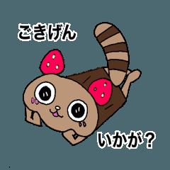 Raccooncake