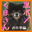 Kuropome-Kumasan-Work