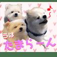 関西弁【そら&ゆう&ぷう】withヒナ