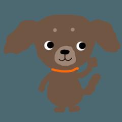 puppy Kallin English