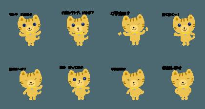 kitten sapphire