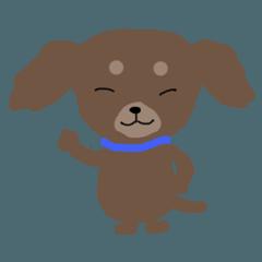 puppy Kallin
