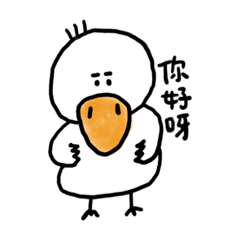 it is a box duck